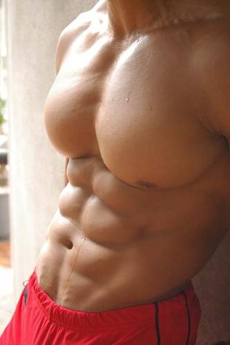 Gladiator´s chest